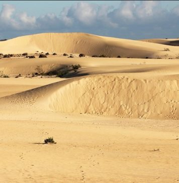 parque natural de las dunas de corralejo